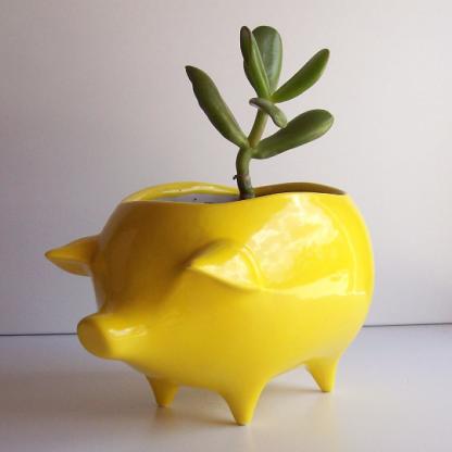 lemon yellow pig planter